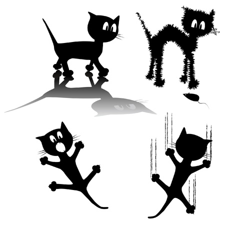 black cat silhouette: Black cat