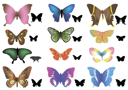 Color butterflies + silhouettes. Stock Vector - 12871515