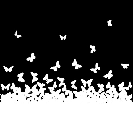 black and white image: The silhouettes of butterflies