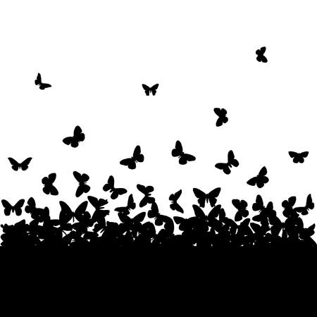 farfalla nera: Le sagome di farfalle Vettoriali