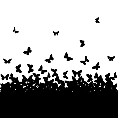 The silhouettes of butterflies