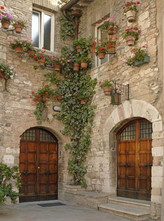beautiful wooden doors, cobblestone walls with potted plants and ivy Stock Photo - 3038110