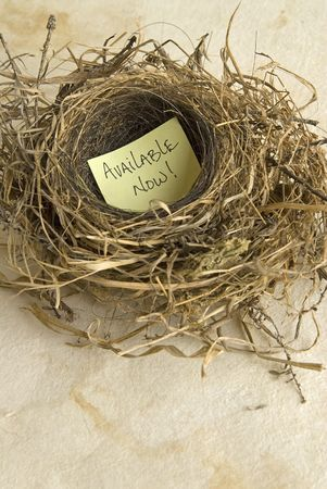 birds nest with a message,yellow post it,on textured paper background Stock Photo - 3126935
