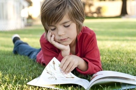 Very cute 7 year old boy lying on the grass reading a kids book Stock Photo - 10529249