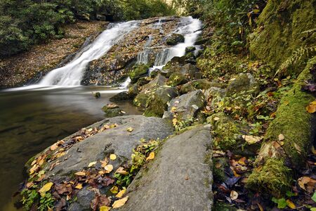 smokies: Split water falls in the Great Smoky Mountain valley with large bolders, fall colored leaves and green vegetation. Stock Photo