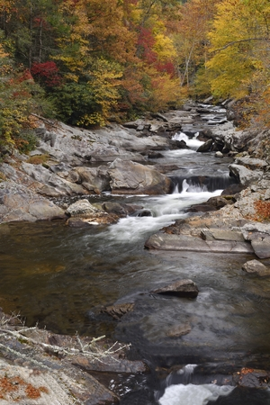 smokies: Ciff view of a long stream with water falls during peak fall colors in the Great Smoky Mountains.