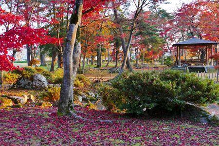 Former Ikeda Family Japanese Garden , Akita, Japan