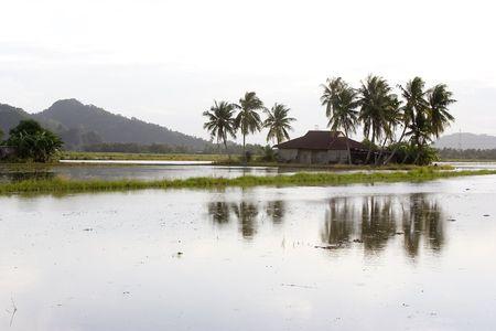 malay village: Tradicional malayo aldea ver la puesta de sol en Malasia. Foto de archivo