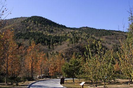 Botanical garden view during the autumn season. Stock Photo - 654751