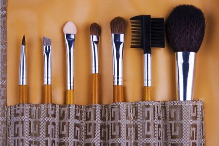 Cosmetic brushes lined up in the tool case.