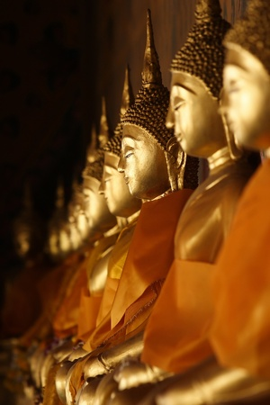 godliness: A row of golden buddha statue at Thailand Temple.