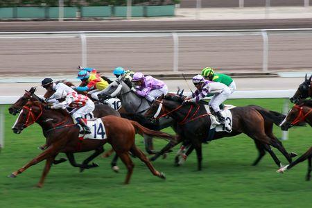 carreras de caballos: El caballo de Racing en el Jockey Club de Hong Kong. (obtuvo alg�n ruido debido a ISO alto y leve borroso para efecto de movimiento)
