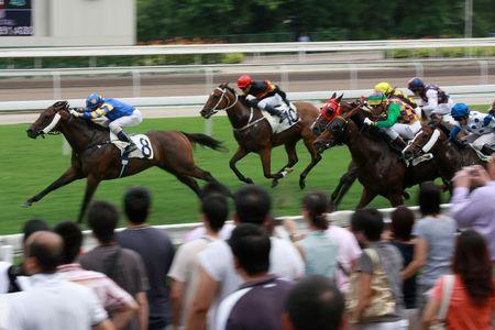 huellas de animales: Las carreras de caballos en Hong Kong Jockey Club. (�algo de ruido debido a la alta sensibilidad ISO y borrosa leve efecto de movimiento)  Foto de archivo