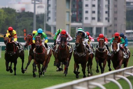 carreras de caballos: La Carreras de Caballos en el Hong Kong Jockey Club. (tengo algo de ruido debido a los altos ISO y ligero efecto borroso de movimiento) Foto de archivo