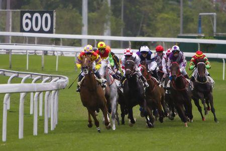 cavallo in corsa: Le corse di cavalli a Hong Kong Jockey Club. (avuto qualche rumore a causa degli elevati ISO e leggero sfocate per effetto del movimento)