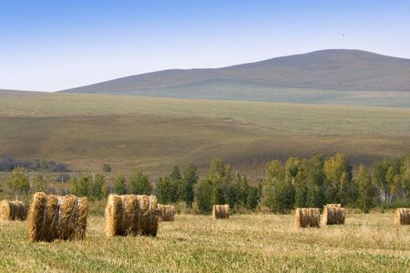 The hay bale in Inner Mongolia grassland in autumn season.  Stock Photo - 1936259
