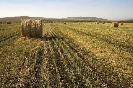 The hay bale in Inner Mongolia grassland in autumn season. Stock Photo - 1936265
