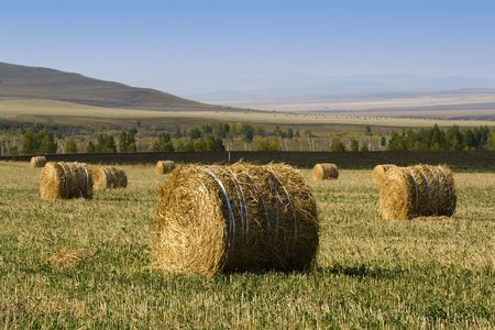The hay bale in Inner Mongolia grassland in autumn season. photo