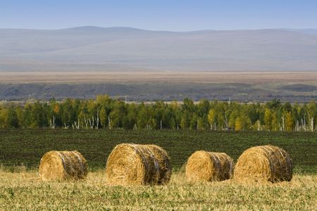 The hay bale in Inner Mongolia grassland in autumn season. Stock Photo - 1936260