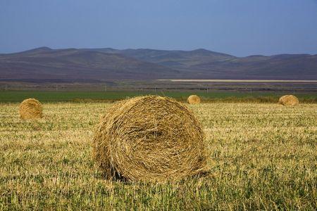 The hay bale in Inner Mongolia grassland in autumn season. Stock Photo - 1936266