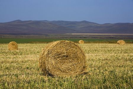 The hay bale in Inner Mongolia grassland in autumn season. Stock Photo - 1936266