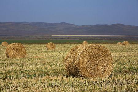 The hay bale in Inner Mongolia grassland in autumn season. Stock Photo - 1936264
