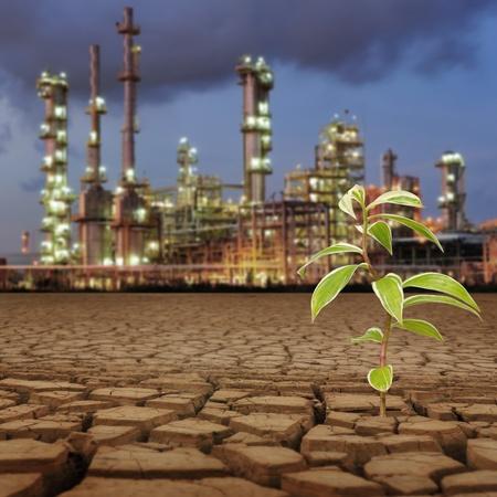 environmental pollution: New life