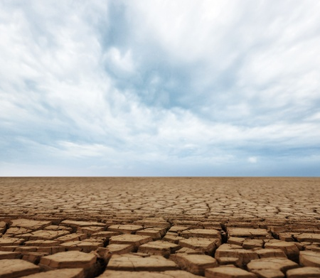 barrenness:  land with dry cracked ground