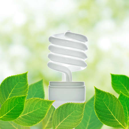 Energy saving lamp with green leaf  photo