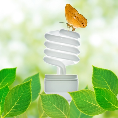 Energy saving lamp with green leaf and butterfly photo