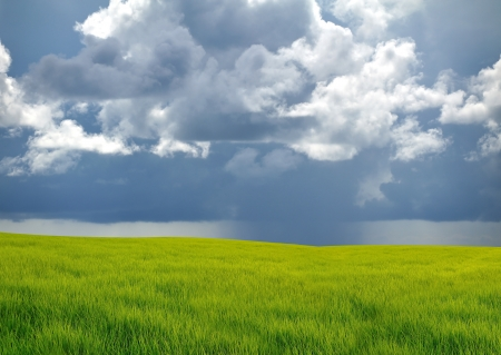 Grass filed with cloud storm Stock Photo - 13688401