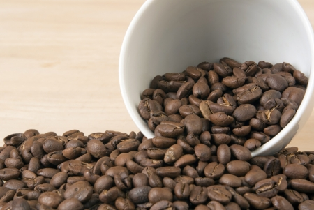 Coffee bean background photo