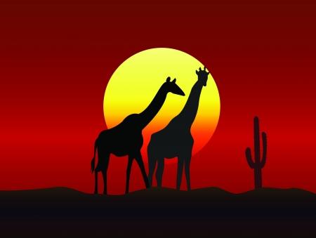 Giraffe family silhouettes  Vector