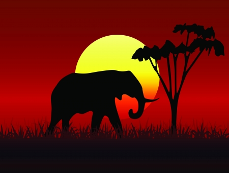Silhouette illustration of a group of elephants  Vector