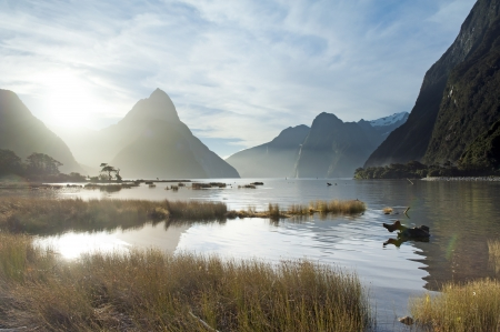 zealand: landscape of high mountain glacier at milford sound, New Zealand Stock Photo