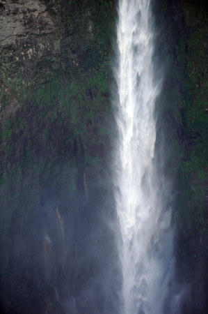 forest conservation: Close up of highest waterfall