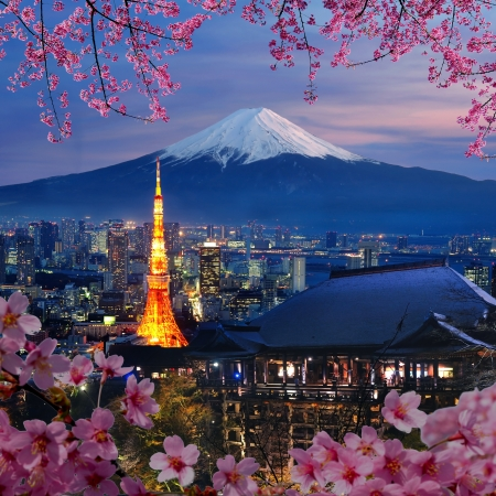 Various travel destination in Japan  Tokyo tower, Mt  Fuji, Kiyomizu-dera temple  You can use for your Japan travel brochures