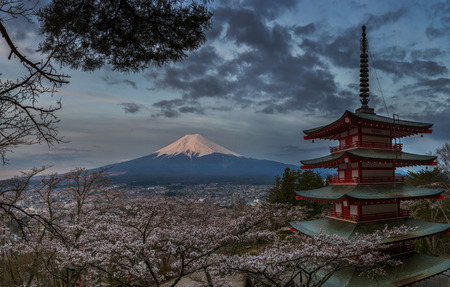 mt fuji: Red pagoda with Mt  Fuji as the background