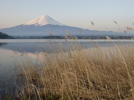 mt fuji: Mt Fuji in the early morning with reflection on the lake kawaguchiko