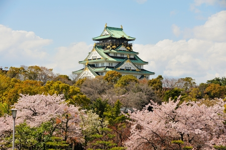 osaka: osaka castle with the cherry blossoms in spring