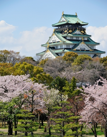 osaka castle: osaka castle with the cherry blossoms in spring