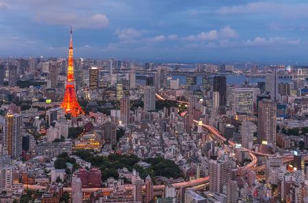 tokyo prefecture: Tokyo city view