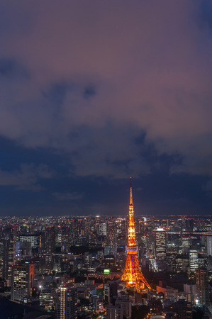 tokyo prefecture: Tokyo tower at the Tokyo city in Japan