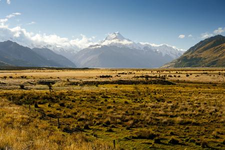 lofty: landscape of mt.cook national park, New Zealand, South Island