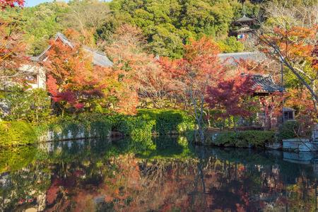 water garden: Autumn foliage at Eikando Temple in Kyoto, Japan