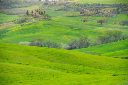 garden scenery: In the middle of the gorge Tuscany Stock Photo