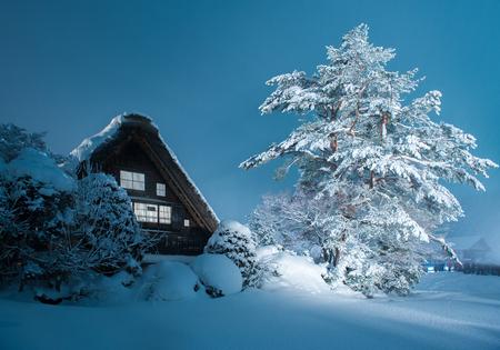 lightup: Historic Village of Shirakawago in winter