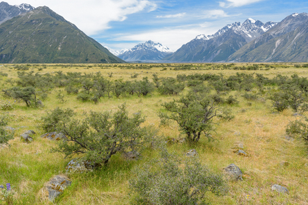 landscape of mt.cook national park, New Zealand, South Island