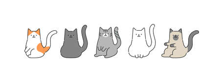 Set of cats in different poses. Vector illustration in flat style. Animal concept.