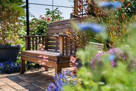 sunlight and garden benches